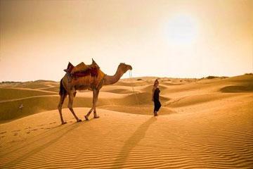 jaisalmer-safari